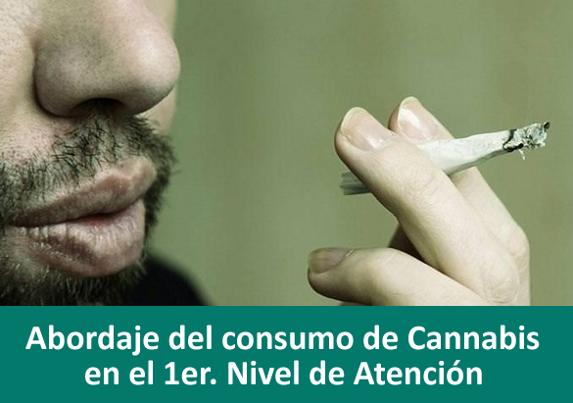 Abordaje del consumo de Cannabis en el 1er. Nivel de Atención