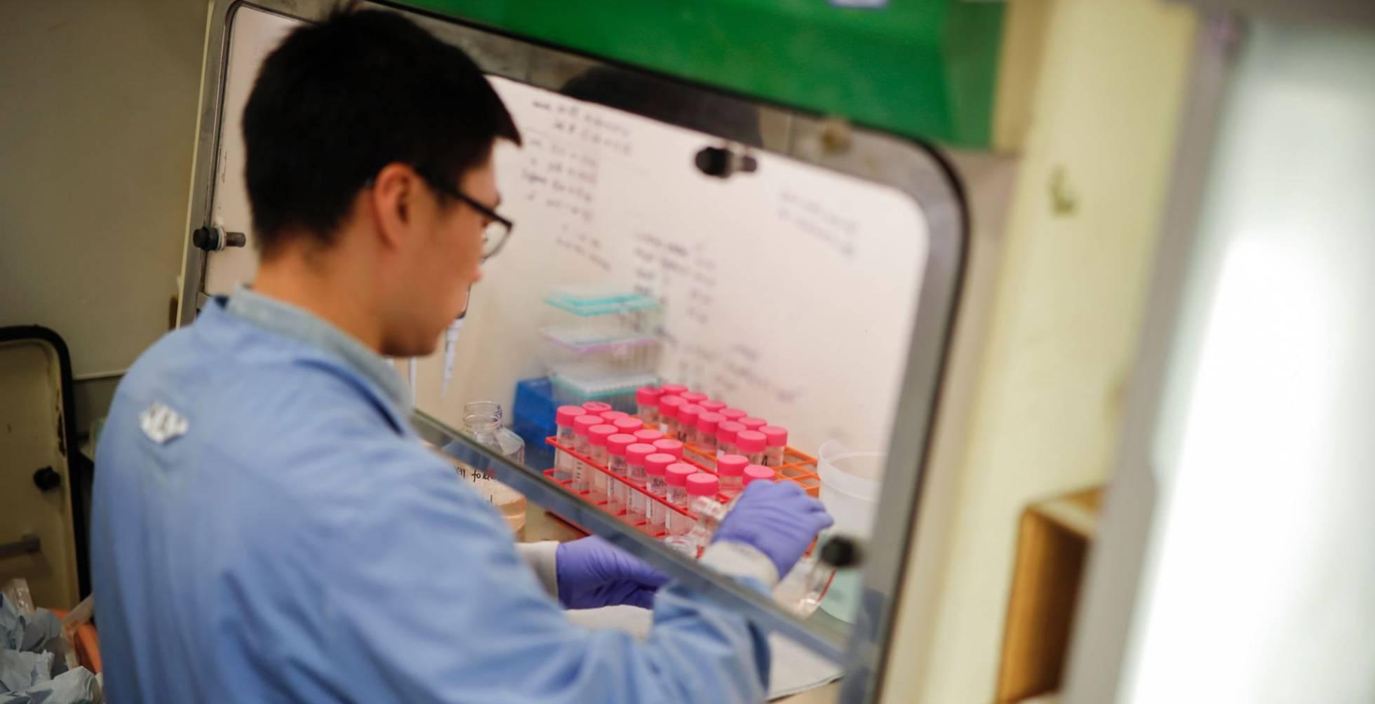 Preparación y control de la enfermedad por coronavirus 2019 (COVID-19) en América Latina